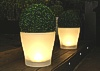 New - Illuminated Planters