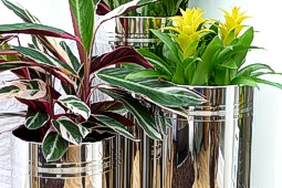 Polished Stainless Steel Cylinder Planters